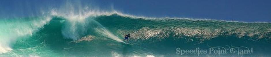 Darin Surfing Java